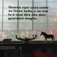 192_bello.jpg