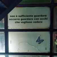 192_fraseggio5.jpg