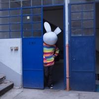 193_zoo-bunny.jpg
