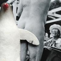 223_pinguinooo.jpg