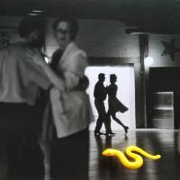 223_snake.jpg