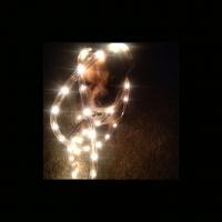 225_circa-luce.jpg